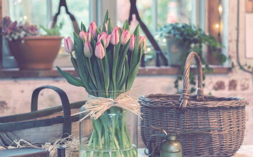 flower-2589988_1920 (1)